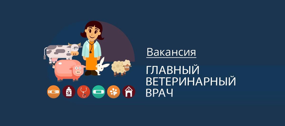 Вакансия Главный ветеринарный врач